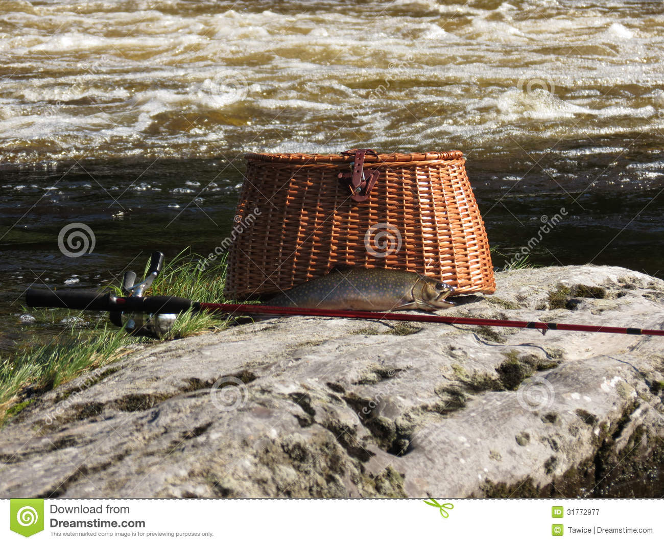 Wicker Fishing Creel With Fishing Pole And Legal Length Brook Trout