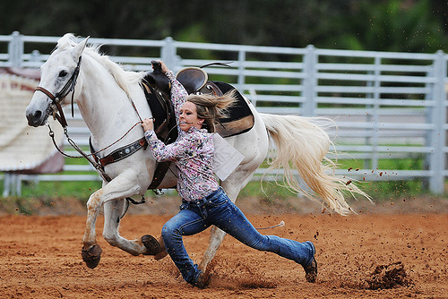 online payment marketplace goat rodeo First frontier rodeo pa marketplace culinary connection exhibit forms & registration rules & regulations 103nd pennsylvania farm show.