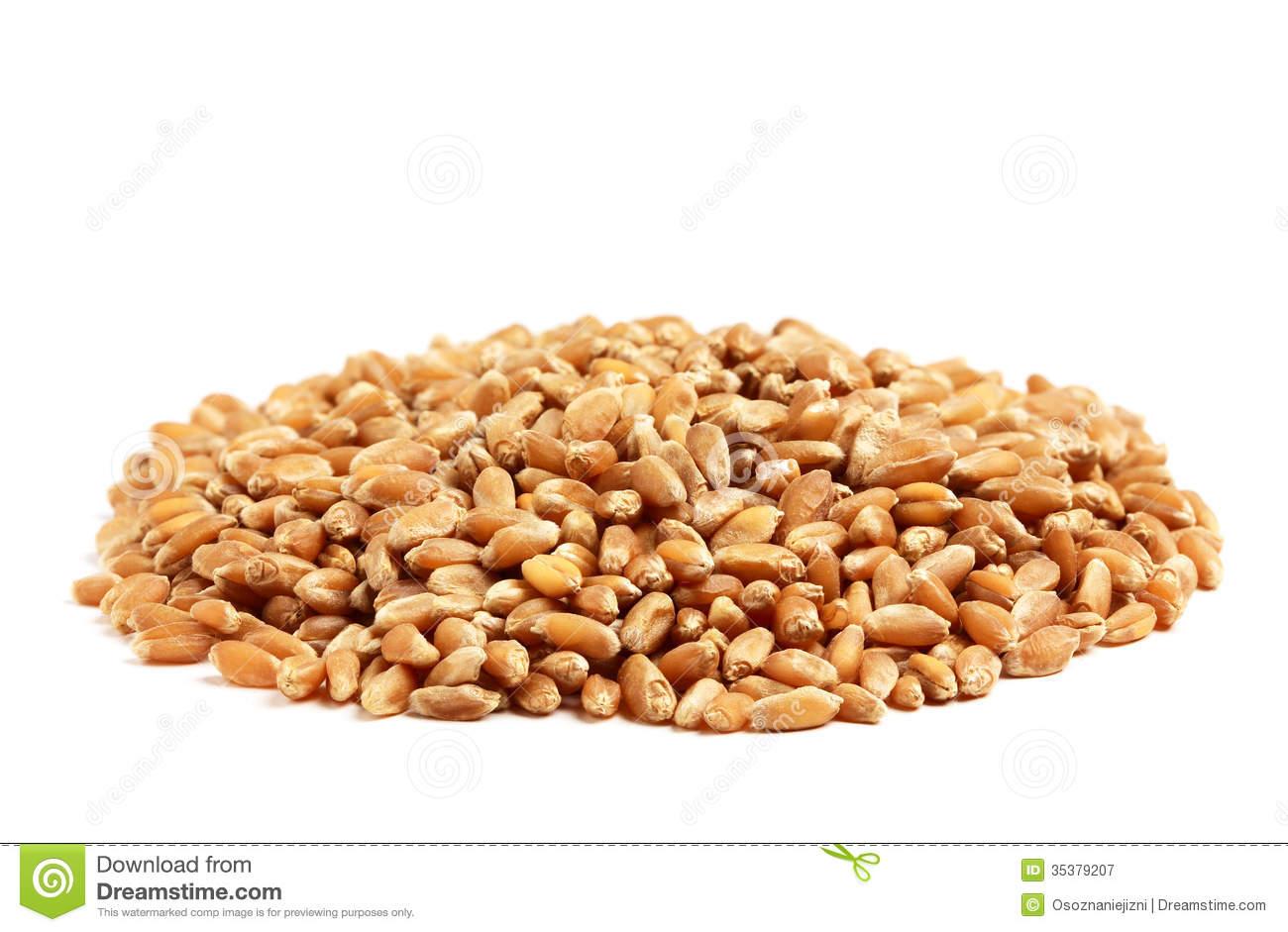 Grains Food Group Clipart - Clipart Suggest