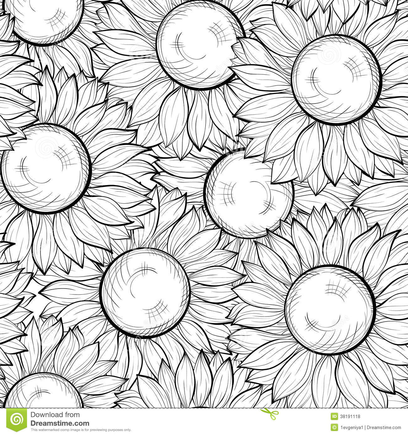Background With Sunflowers  Hand Drawn Contour Lines And Strokes