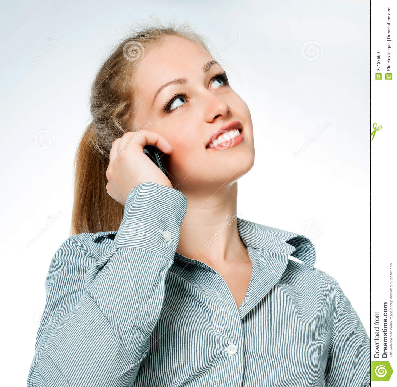 Business Lady On The Phone Calls Stock Photo   Image  20188650