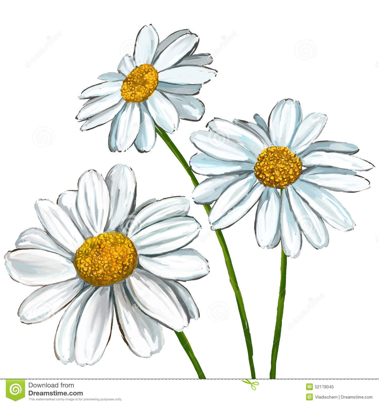 Daisy Hand Drawn Clipart Clipart Suggest