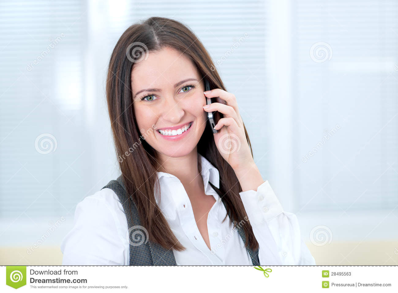 Smiling Business Lady With Mobile Phone Stock Photos   Image  28495563