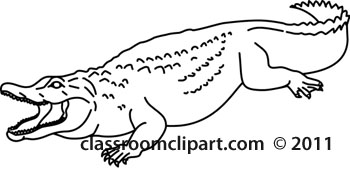 Animals   Aligator 2012 3 Outline   Classroom Clipart