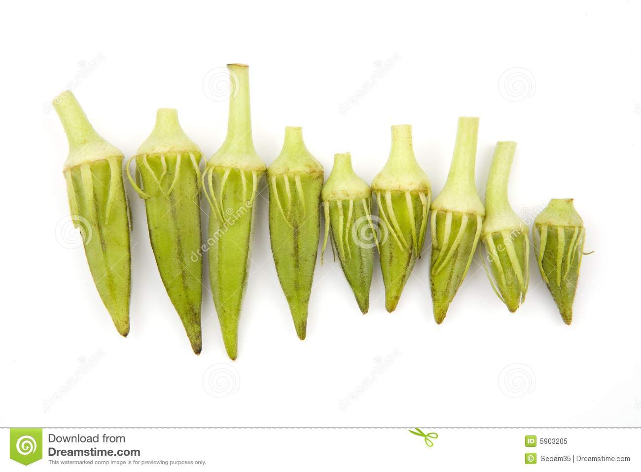 Okra Royalty Free Stock Photo   Image  5903205