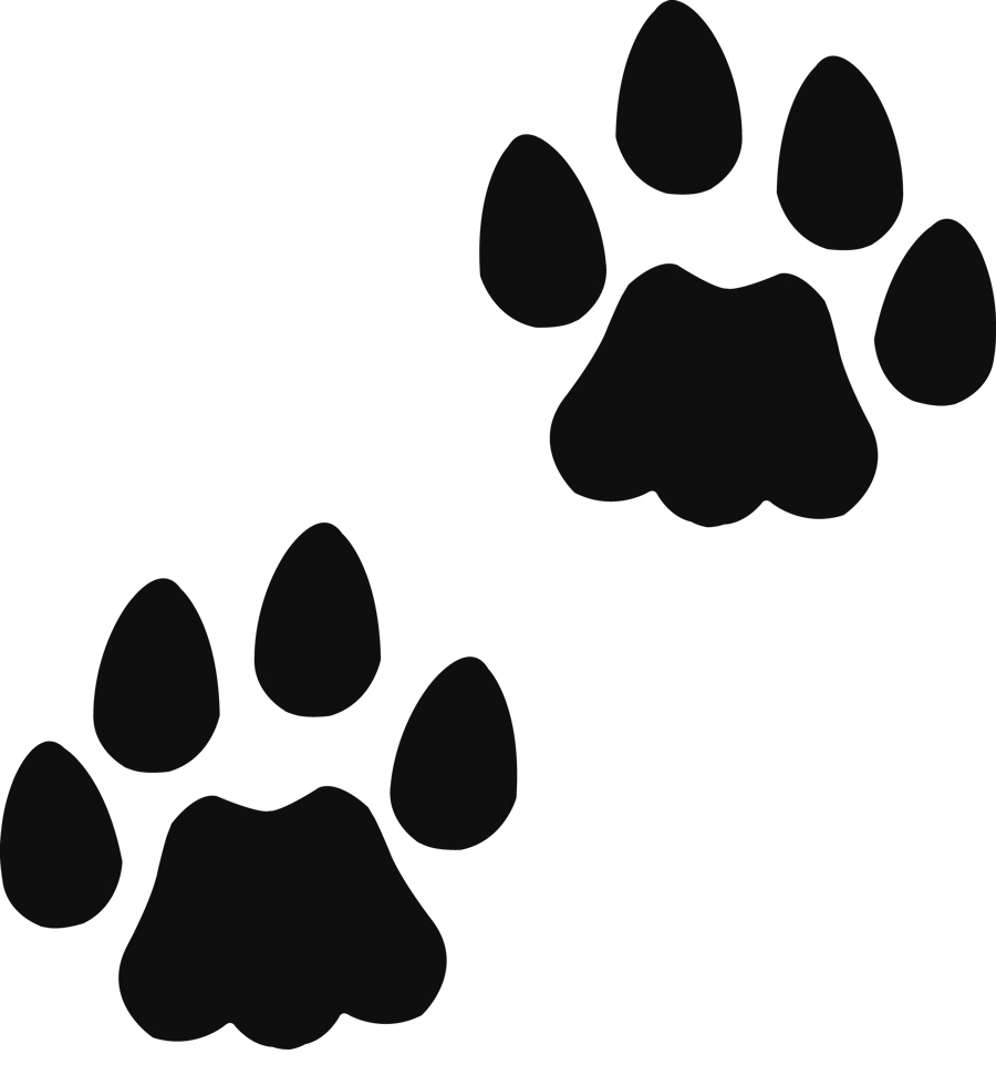 Teddy Bear Paw Print Clipart - Clipart Suggest