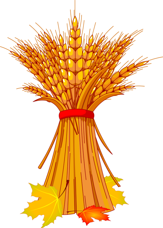 Harvest Wheat Png   Dixie Allan