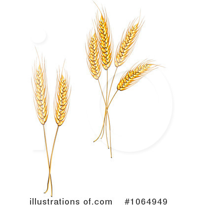 Wheat Harvest Clipart