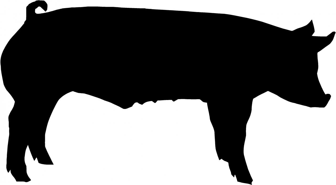 12 Show Pig Silhouette Free Cliparts That You Can Download To You