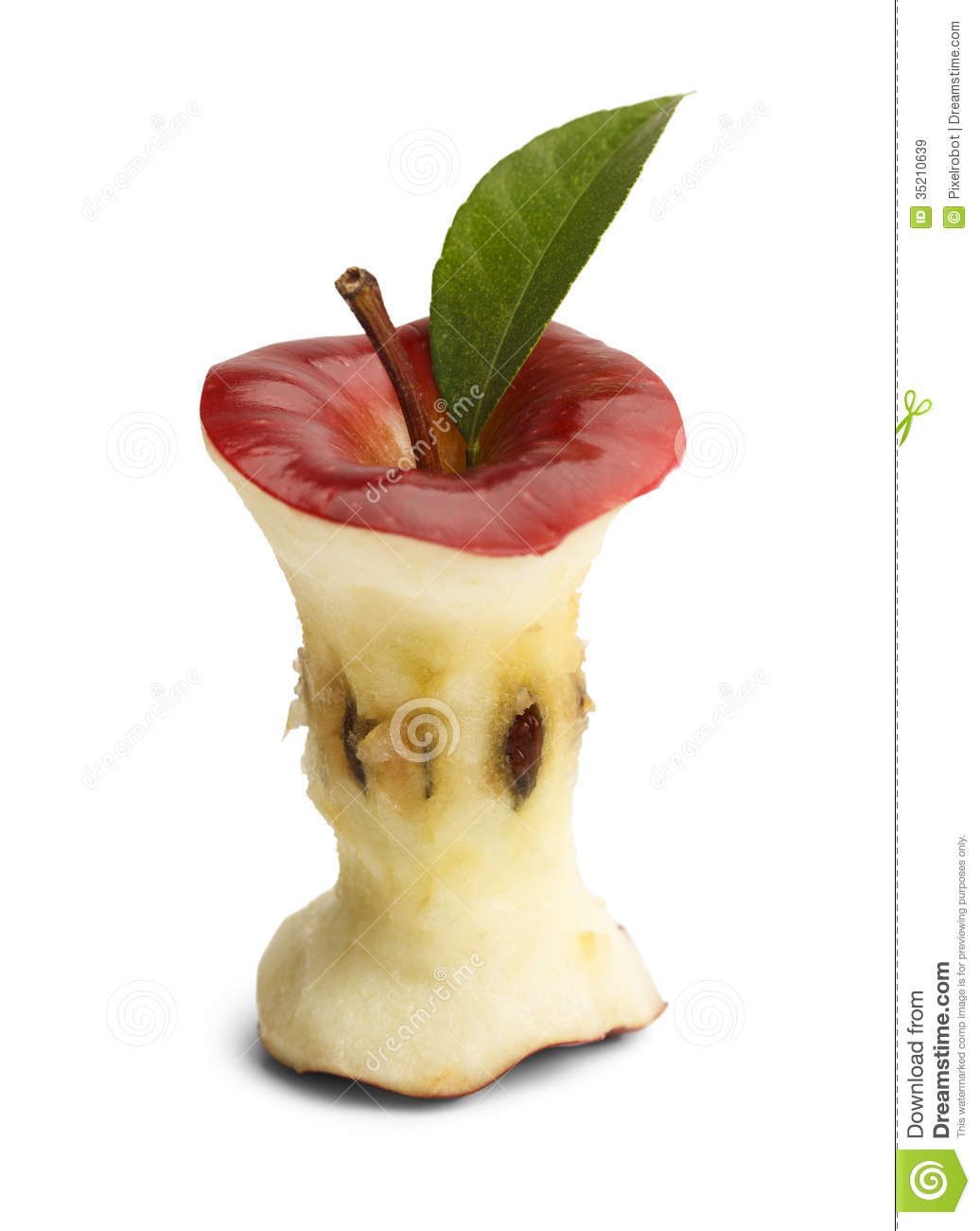 Green Apple Core Clipart Clipart Suggest