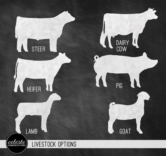 Livestock Show Chalkboard Inspired Metal Sign Wall By Celestecomm  30