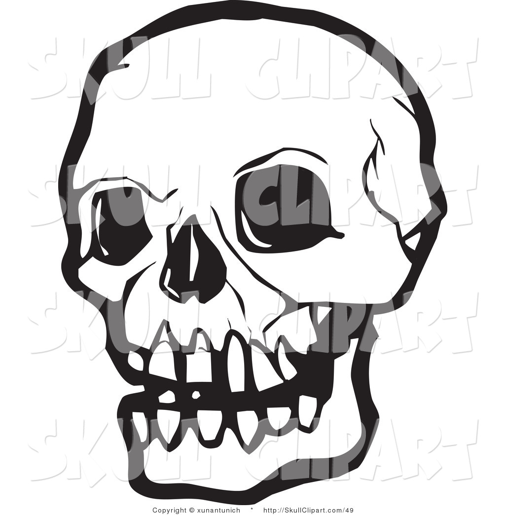 Vector Clip Art Of A Black And White Human Skull With Dark Eye Sockets