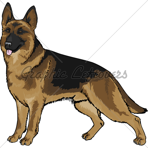 German Shepherd   Gl Stock Images