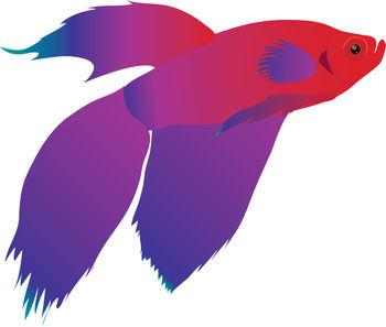 Purple Fish Clipart - Clipart Suggest