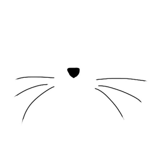 Perfect    Cats Illustrations   Pinterest   Cat Whiskers Cats And