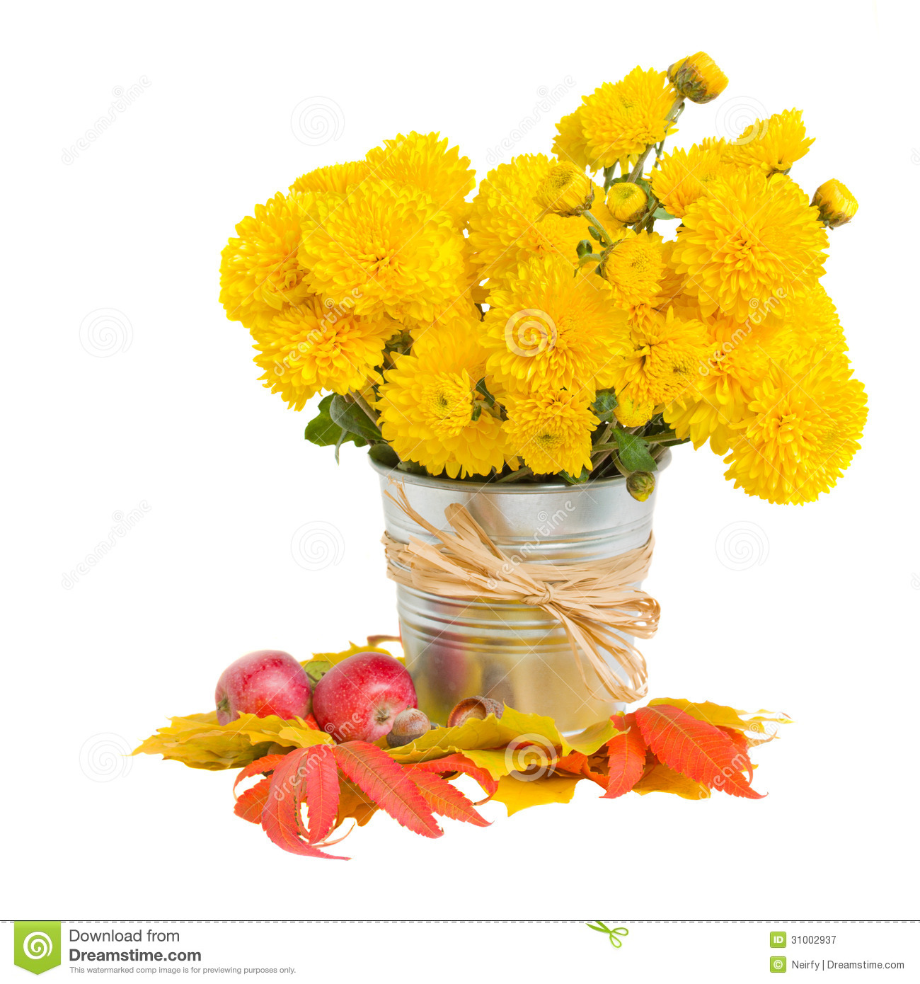 Bouquet Of Yellow Mums In Pot Royalty Free Stock Photography   Image
