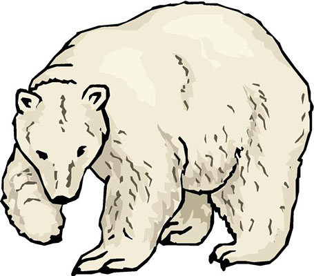 polar animals clipart   clipart suggest