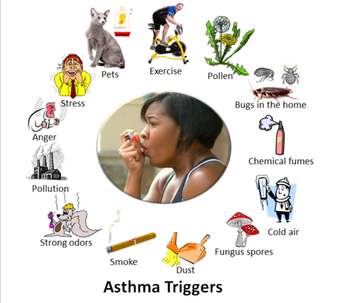 These Are Some Of The Things That May Make A Person S Asthma Worse And
