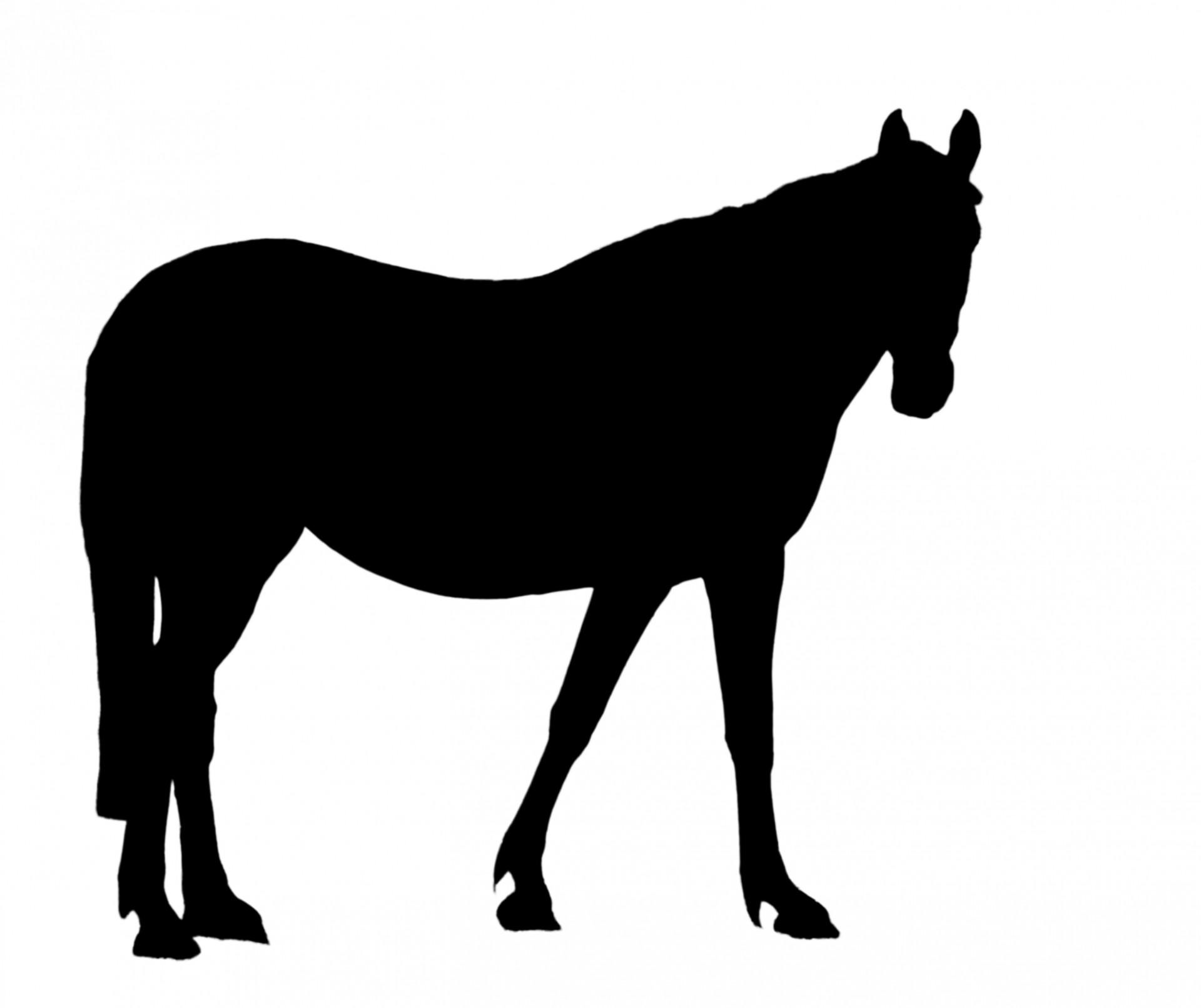 Black Horse Clipart Clipart Suggest