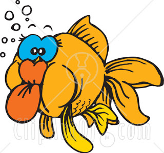 Funny Animals Clipart Funny Animals Clipart Funny Animals Clipart