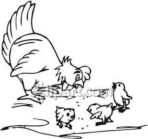 And Hen Chicksclipart Clipart - Clipart Kid