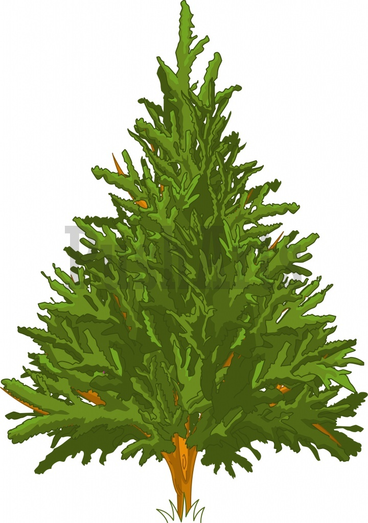 Winter Pine Trees Clipart - Clipart Kid