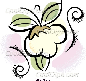 Cotton Vector Clip Art