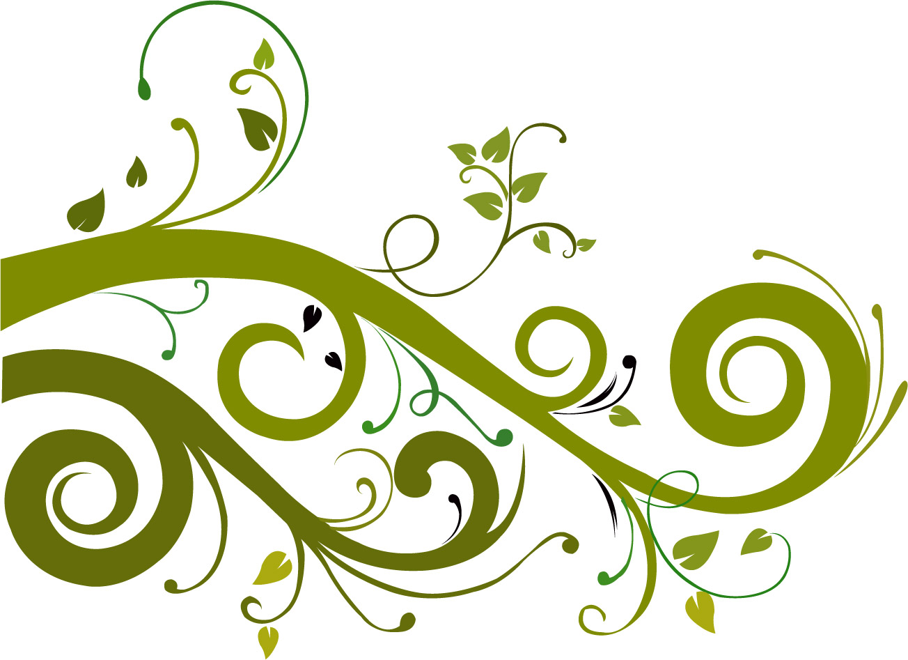 Flower Vector Graphic 7554 Hd Wallpapers In Vector N Designs