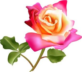 Http   Www Dailyclipart Net Wp Content Uploads Medium Flower9 Jpg