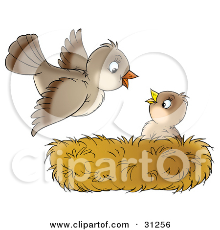 Mom and baby bird clipart