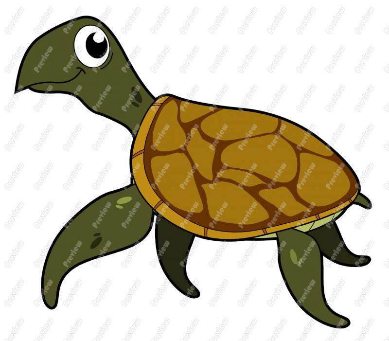 Sea Turtle Character Clip Art   Royalty Free Clipart   Vector Cartoon