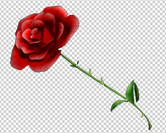 Gimp Tutorial   How To Make An Image Background Transparent