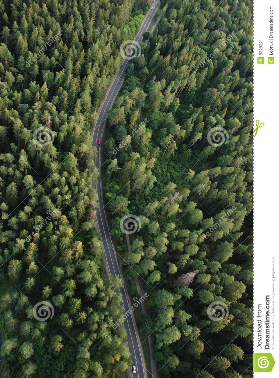 More Similar Stock Images Of   Forest From The Birdseye View