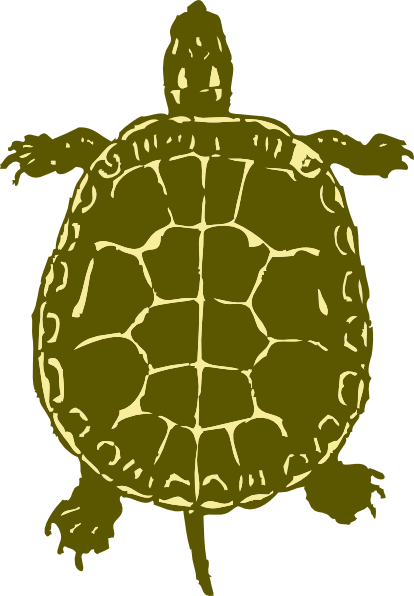 Turtle Art Clip Art  Png And Svg