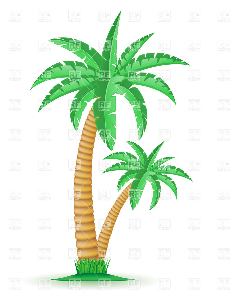 Tropical Palm Trees Clipart - Clipart Kid