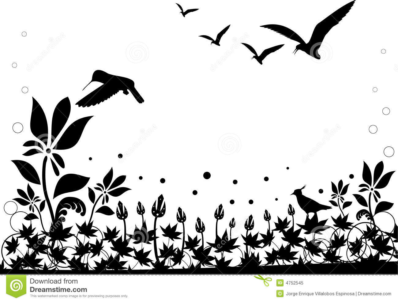 Black And White Nature Vector Royalty Free Stock Photo   Image