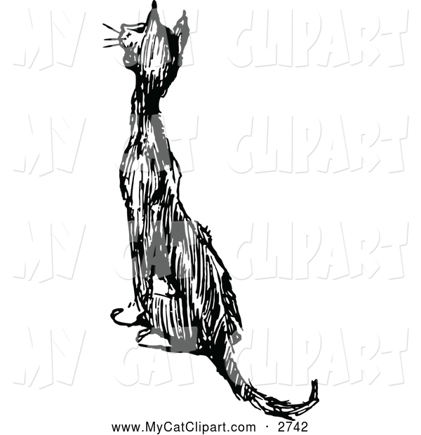 White Cat Meowing And Sitting Cat Clip Art Prawny Vintage