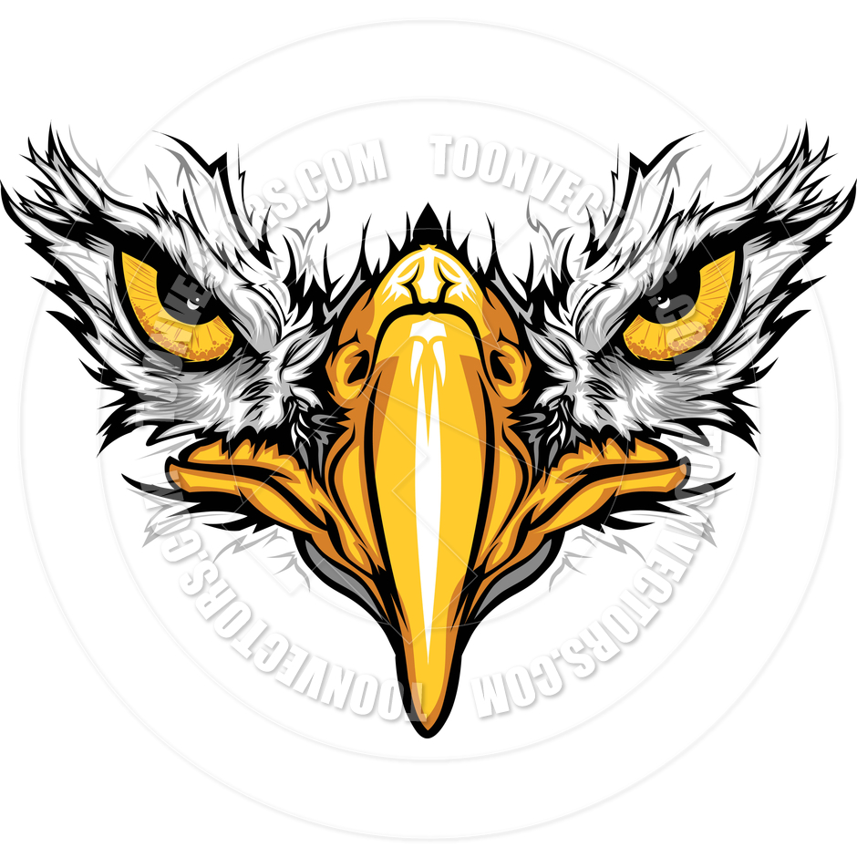 Eagle Eyes And Beak Vector Illustration By Chromaco   Toon Vectors Eps