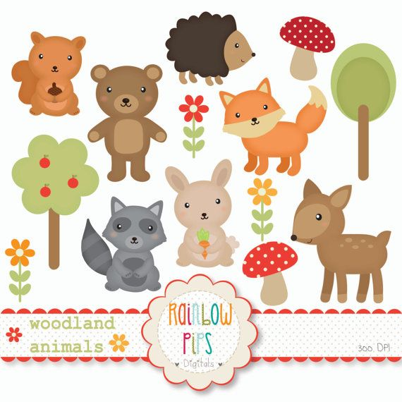 Woodland Forest Animals Digital Clipart Set