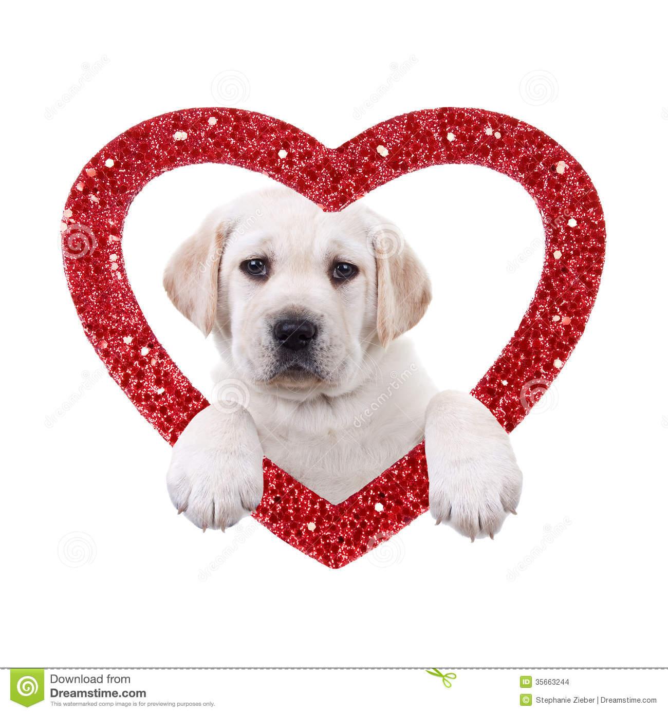 valentine puppy clipart - photo #24
