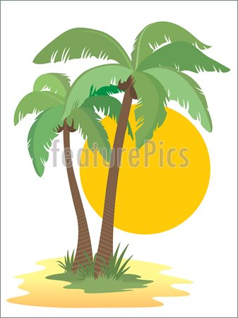 Cartoon Palm Trees With Coconuts