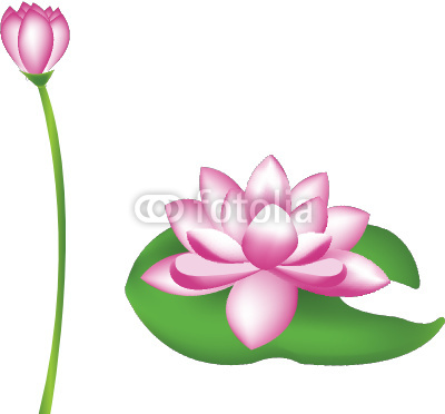 Lotus Flower Border Clipart - Clipart Kid