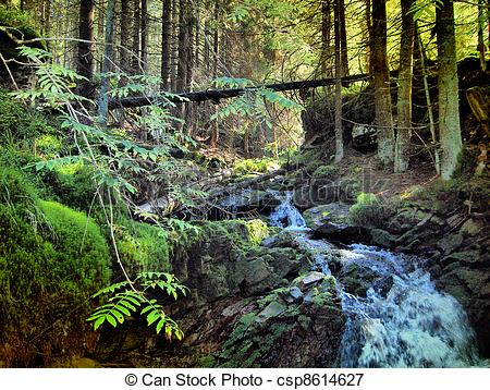 Stock Photo   Mountain Creek   Stock Image Images Royalty Free Photo