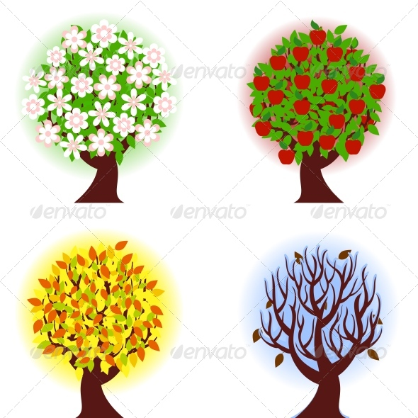 Four Seasons Of Apple Tree    Seasons Holidays Conceptual