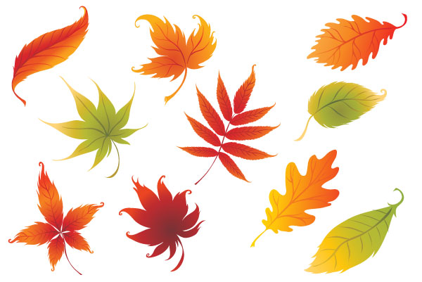 Colorful Leaf Clipart - Clipart Kid