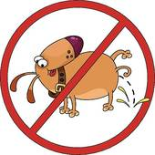 No Dogs Sign Stock Illustrations