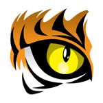 Tiger Eyes Tattoo Tiger Eye Tattoo Jpg