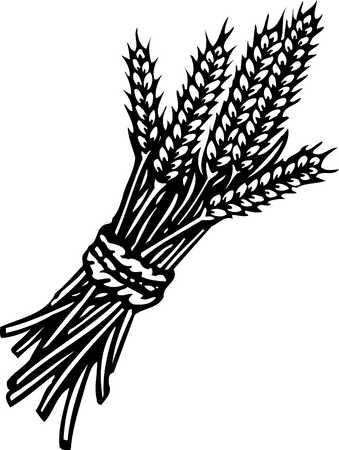 grains black and white clipart clipart suggest