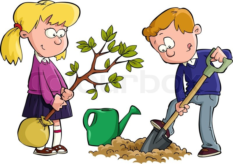 Stock Image Of  Planting A Tree