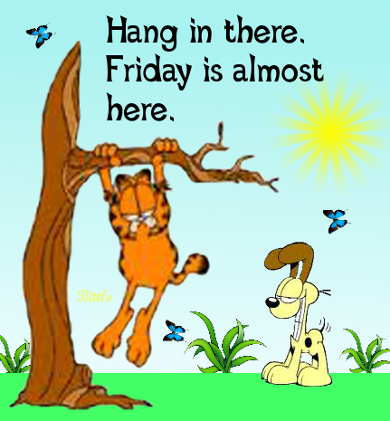 Hang In There It S Almost Friday Pictures Photos And Images For